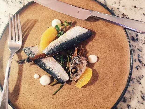 sardine99